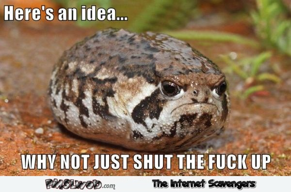Just STFU toad meme