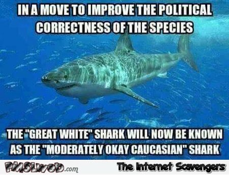 We will rename the white shark funny meme @PMSLweb.com