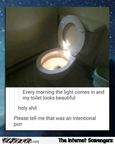 Holy toilet light humor
