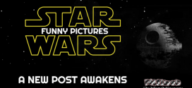 Funny Star Wars pictures – A new post awakens