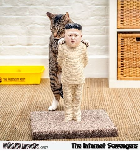 Kim Jong un cat scratching post – Crazy cat world @PMSLweb.com