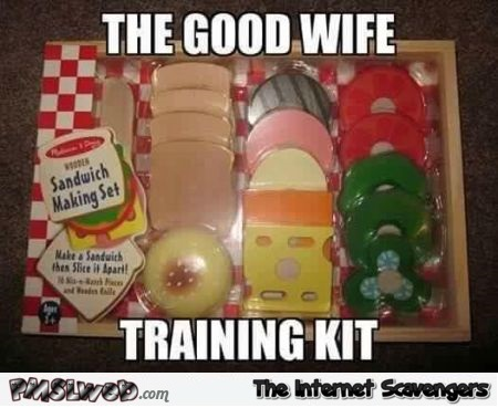 The good wife training kit meme @PMSLweb.com