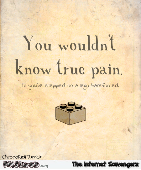 You wouldn't know true pain funny lego quote @PMSLweb.com
