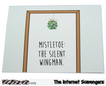 Mistletoe the silent wingman @PMSLweb.com
