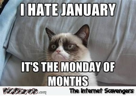 I hate January meme @PMSLweb.com