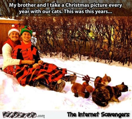 Funny Christmas picture taken with cats @PMSLweb.com