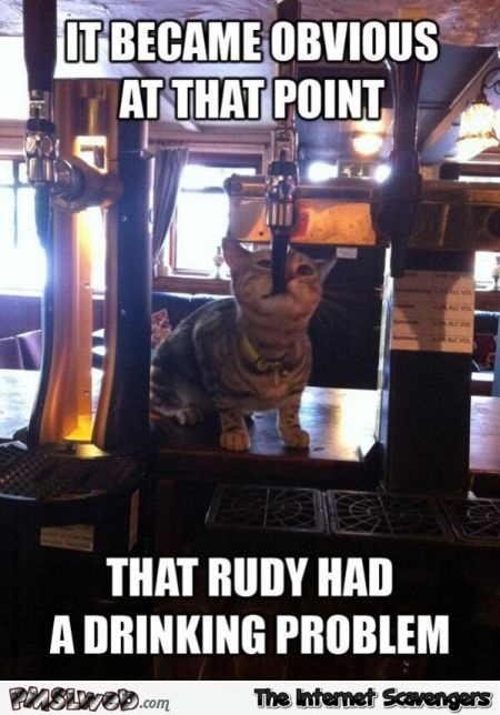 Cat has a drinking problem meme @PMSLweb.com