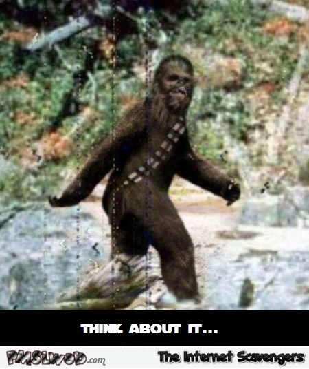 Chewbacca is the big foot humor – Funny Star Wars pictures @PMSLweb.com