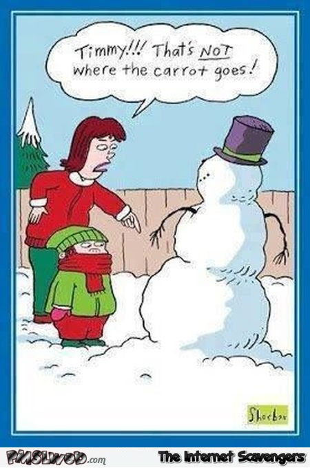 Funny snowman carrot fail cartoon @PMSLweb.com