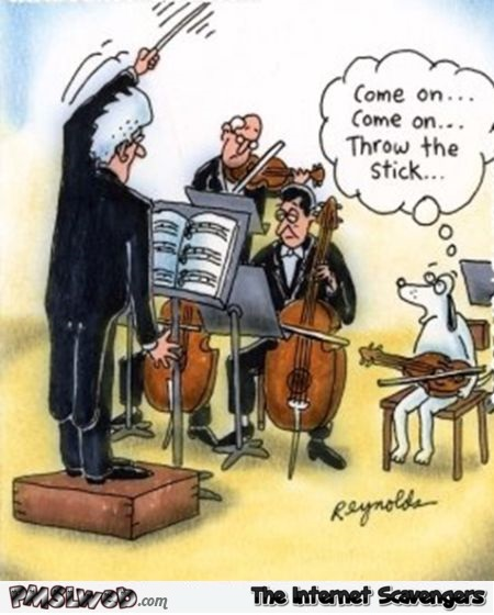 Funny dog in orchestra cartoon @PMSLweb.com