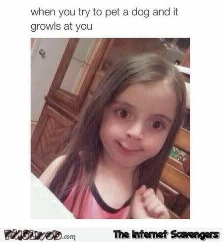 When you try to pet a dog and it growls at you humor @PMSLweb.com
