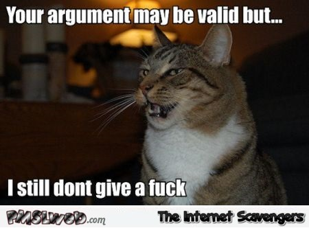 Your argument may be valid cat meme