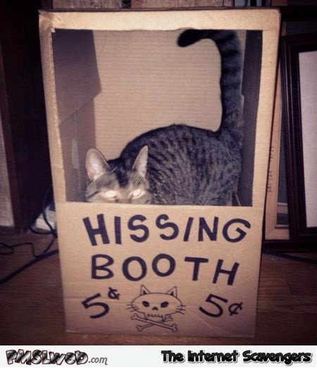 Hissing booth @PMSLweb.com