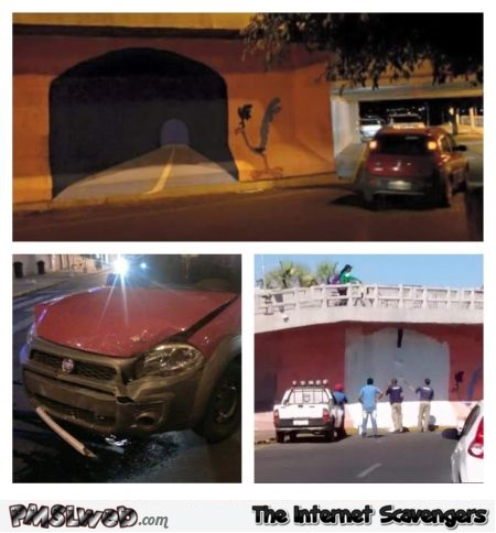 Funny Coyote and road runner tunnel fail @PMSLweb.com