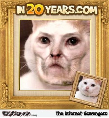 Funny what my cat will look like in 20 years @PMSLweb.com