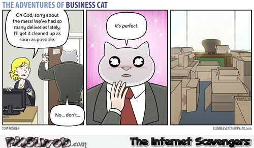 The adventures of business cat boxes humor @PMSLweb.com