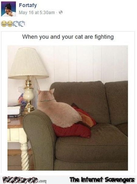 When you and your cat are fighting humor – Thursday madness @PMSLweb.com