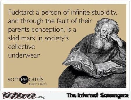 Fucktard definition sarcastic ecard @PMSLweb.com