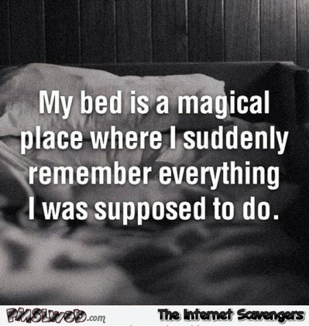 My bed is a magical place funny quote @PMSLweb.com