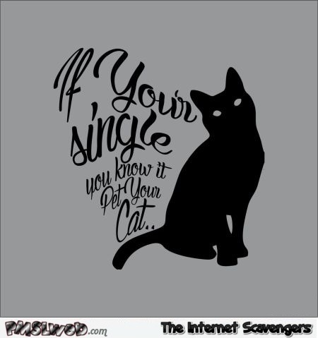 If you're single and you know it cat humor @PMSLweb.com