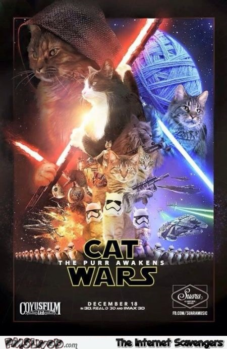 Funny cat wars poster – Daily funny pictures @PMSLweb.com