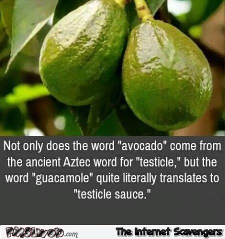 Avocado word humor @PMSLweb.com
