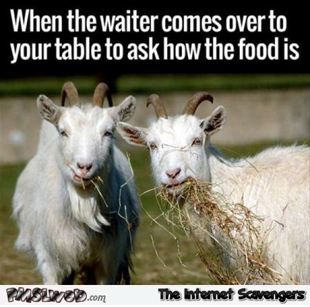When the waiter comes over to your table humor @PMSLweb.com