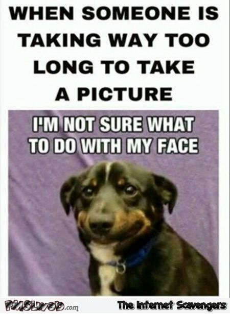 When someone is taking too long to take a picture humor – Foolish hump day @PMSLweb.com