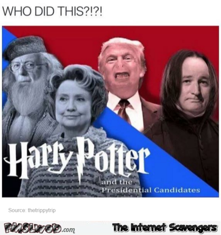 Funny Harry Potter and the presidential candidates @PMSLweb.com