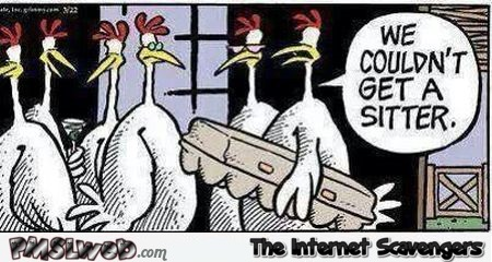 Chicken couldn't get a sitter funny cartoon @PMSLweb.com