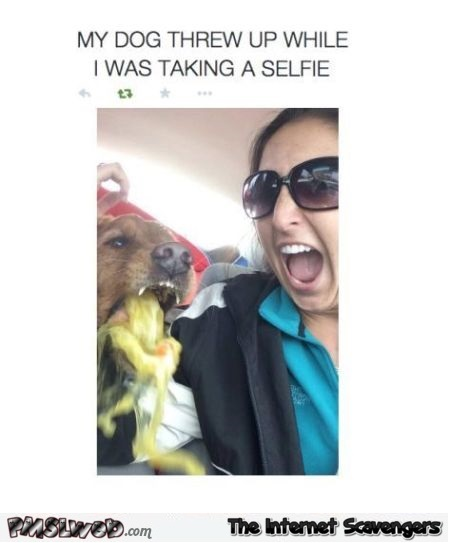 Dog throws up during selfie humor