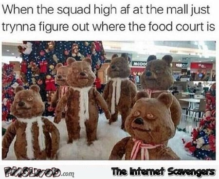 Funny when the squad is high at the mall @PMSLweb.com