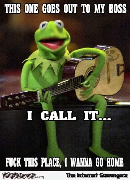 Song dedicated to my boss funny Kermit meme @PMSLweb.com