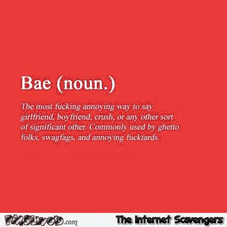Funny definition of bae