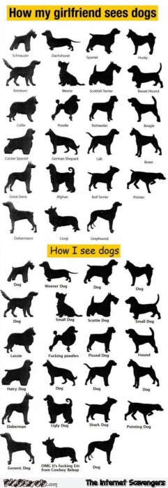 How men see dogs humor