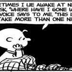 Sometimes I lie awake at night funny Charlie Brown cartoon @PMSlweb.com