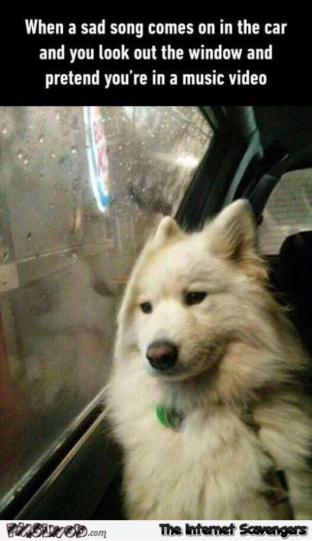 When a sad song comes on in the car humor @PMSLweb.com