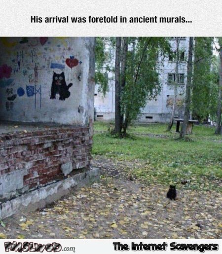 His arrival was foretold cat humor