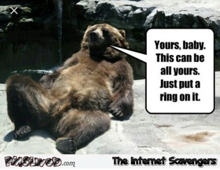 This can be all yours bear humor
