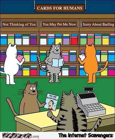 Cards for humans funny cat cartoon @PMSLweb.com