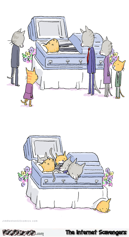 Cat funeral funny cartoon @PMSLweb.com
