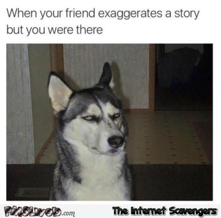 When your friend exaggerates a story humor @PMSLweb.com