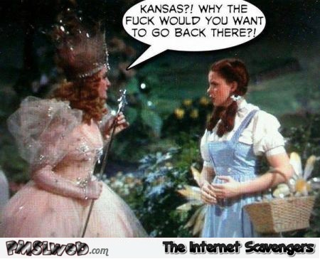 Funny wizard of Oz why would you want to go back to Kansas