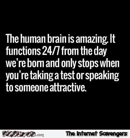 The human brain is amazing funny quote @PMSLweb.com