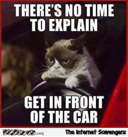 Get in front of the car Grumpy cat meme – Weekend laughter @PMSLweb.com