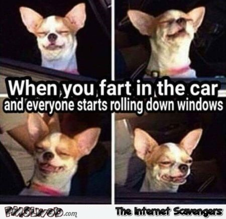 When you fart in the car meme @PMSLweb.com