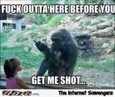 Gorilla doesn't want to get shot sarcastic meme @PMSLweb.com