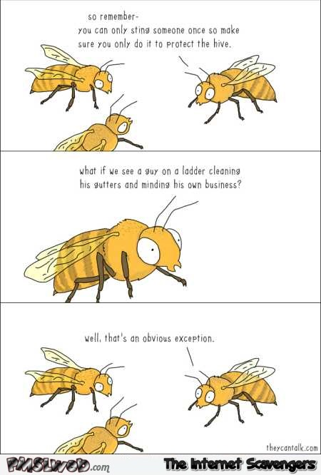 Funny bee logic cartoon @PMSLweb.com