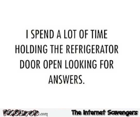 I spend a lot of time holding the refrigerator door open funny quote @PMSLweb.com