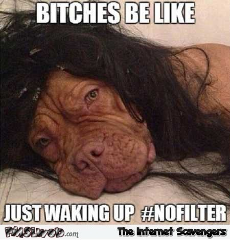 Bitches be like waking up no filter meme
